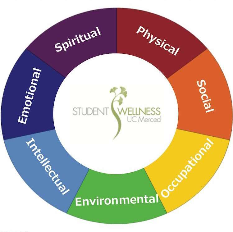 7 dimensions of wellness emotional, spiritual, physical, social, occupational, environmental, intellectual